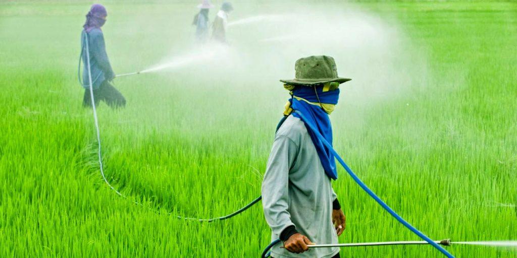 Resultado de imagem para agrotoxicos no brasil
