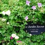 秘密の花園(春24)