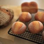 WSのパンは「チョコミントカンパーニュ」と「プチパン・ミニ食パン」