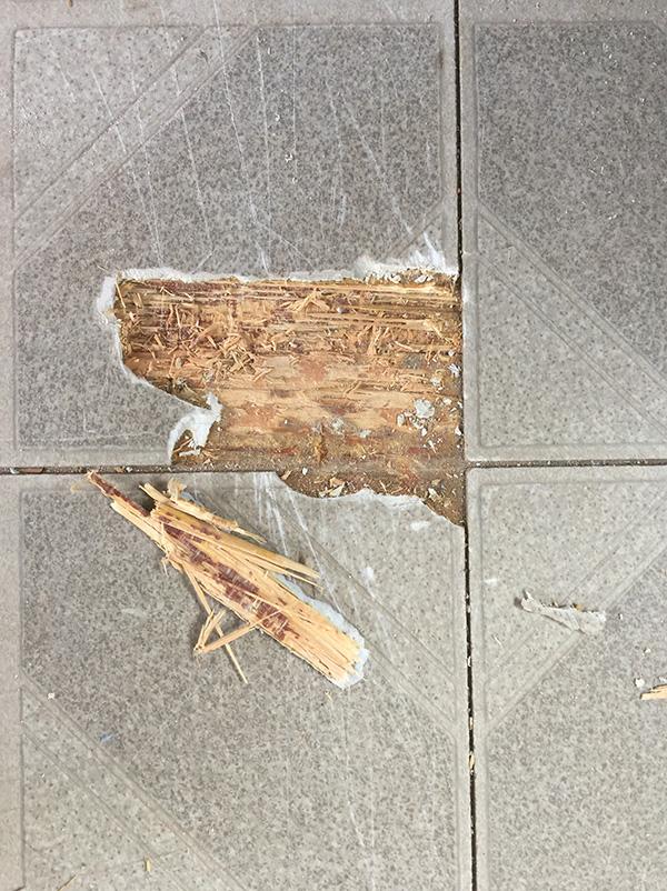 The old floor tiles
