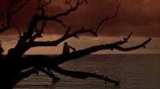 Daniel Defoe's Robinson Crusoe (1997)
