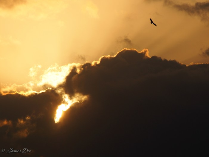 Hunsur Sunset