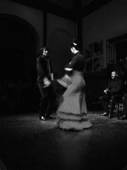flamenco1