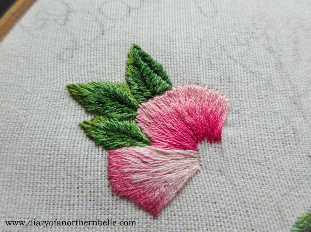 shaded wild rose petals in long & short stitch
