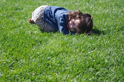 It was past her nap time so she decided to take a nap in the grass.