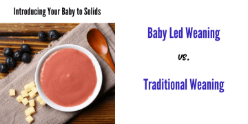 what is baby led weaning post title