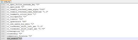 Activate The CS GO Console Via Config File