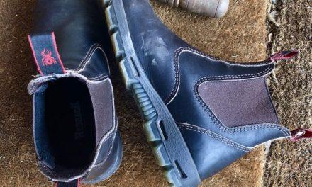 Dibber & Boots