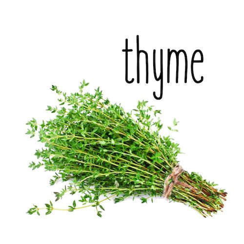Thyme stories