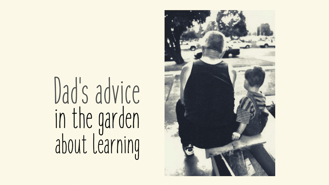 Dads advice in the garden No.1