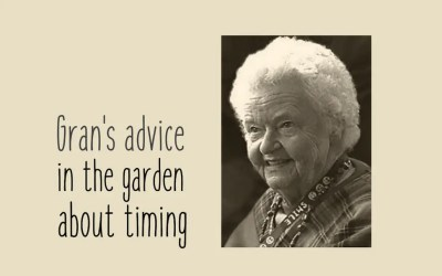 grans advice about timing