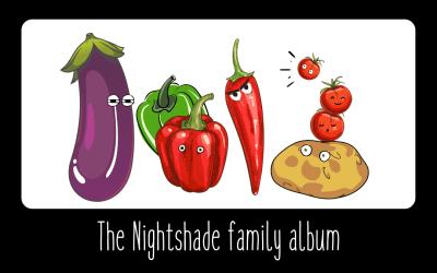 the nightshades
