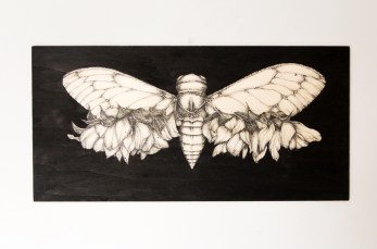 ENTOMOLOGY-VI-30x60x2-cm-tinta-sobre-madera