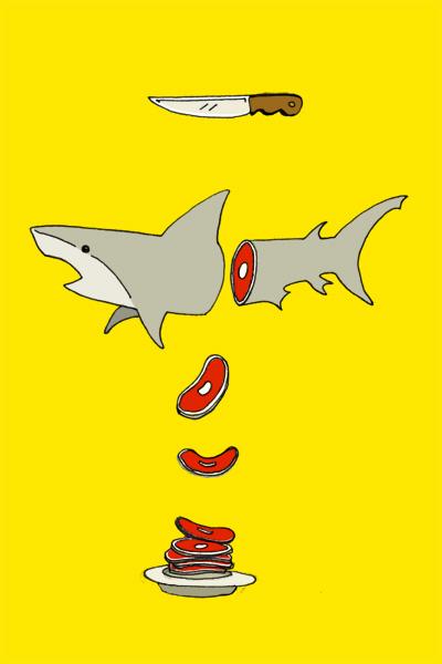 09---Tiburon