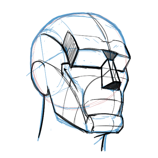 Anatopril, dibujo de anatomía