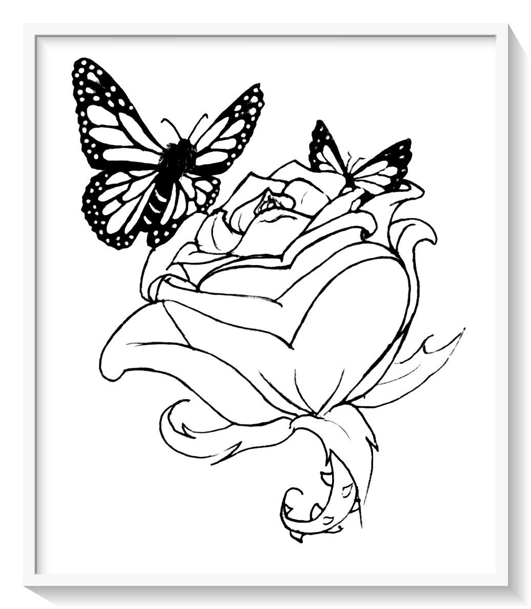 Mariposas Para Imprimir Wiring Diagram Database