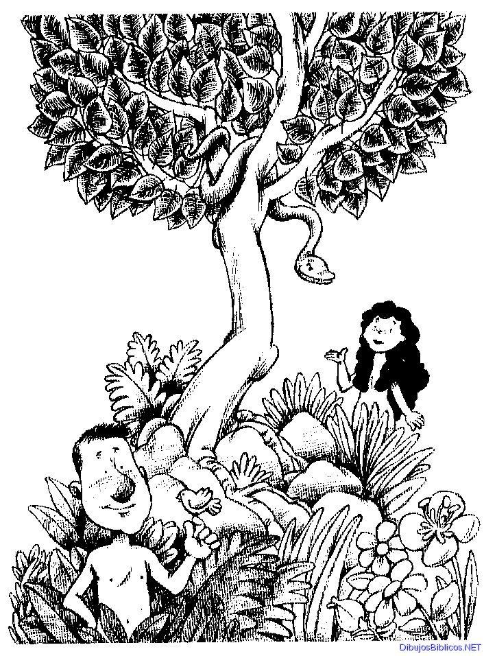 Ad n y eva para colorear dibujos para colorear for Adan y eva en el jardin del eden para colorear