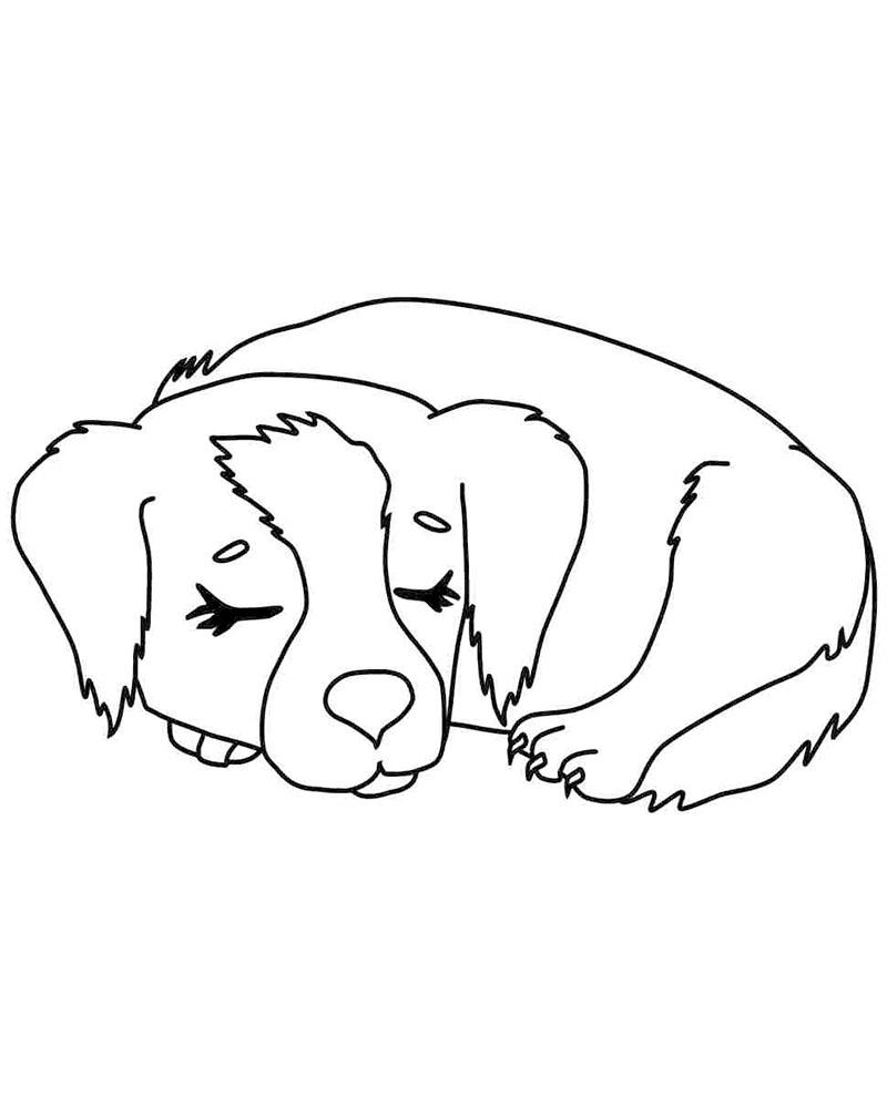 Dibujos de perros faciles para dibujar
