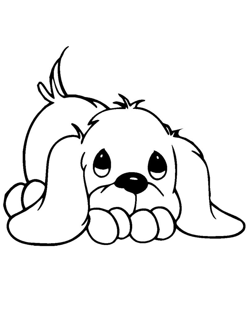 Fotos de dibujos de perros