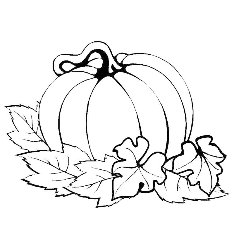 Dibujos Del Día De Acción De Gracias Para Pintar Y Colorear