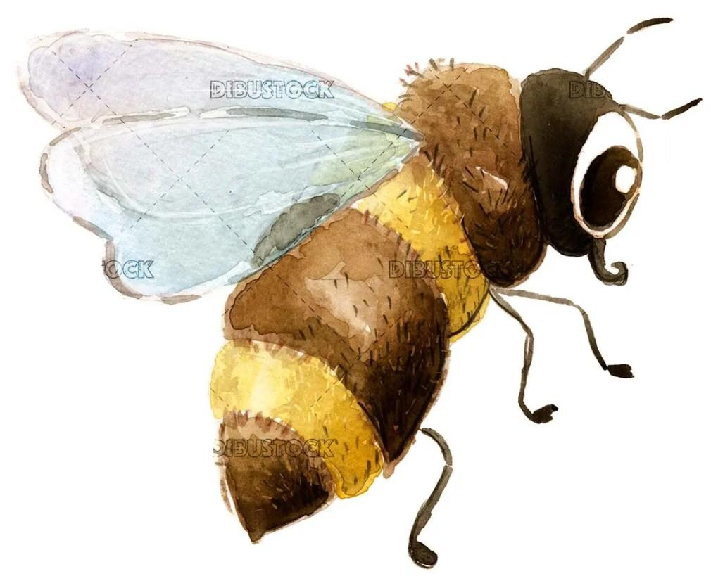 Flying bee acuarela