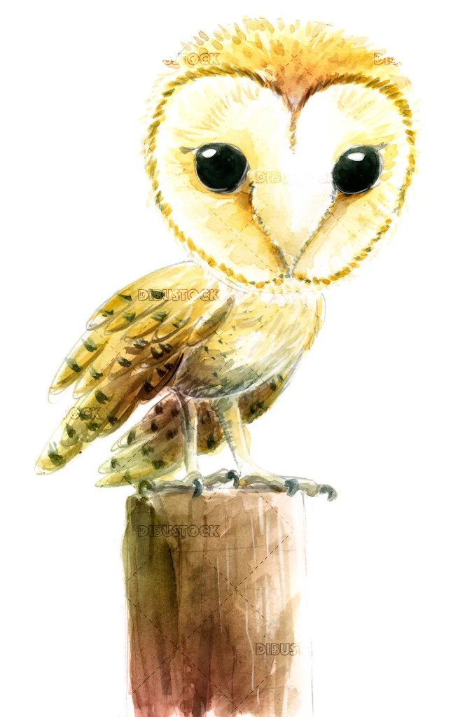 Owl perched on a pole
