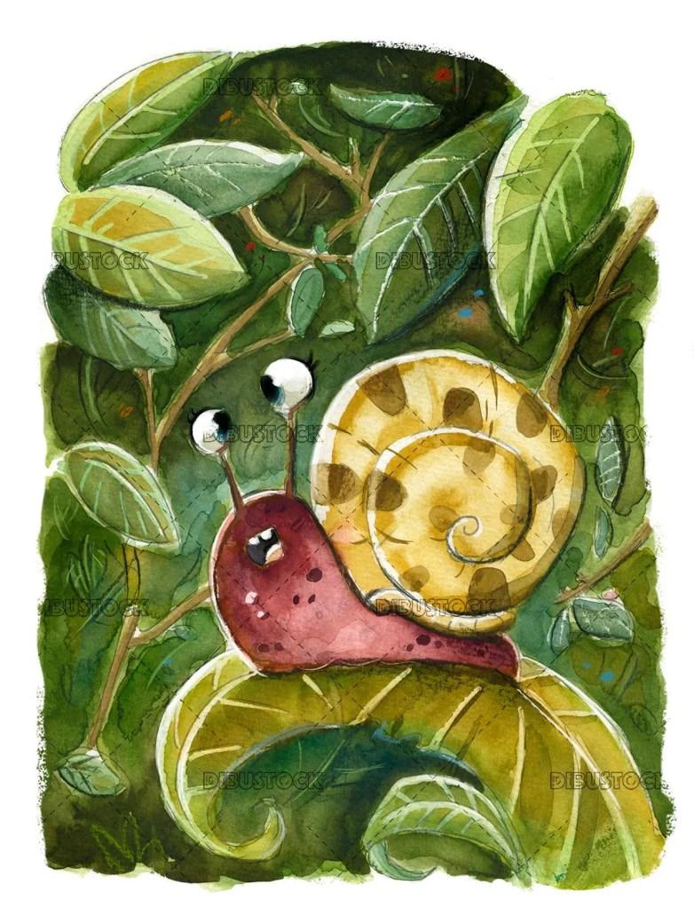 Wild snail leaf