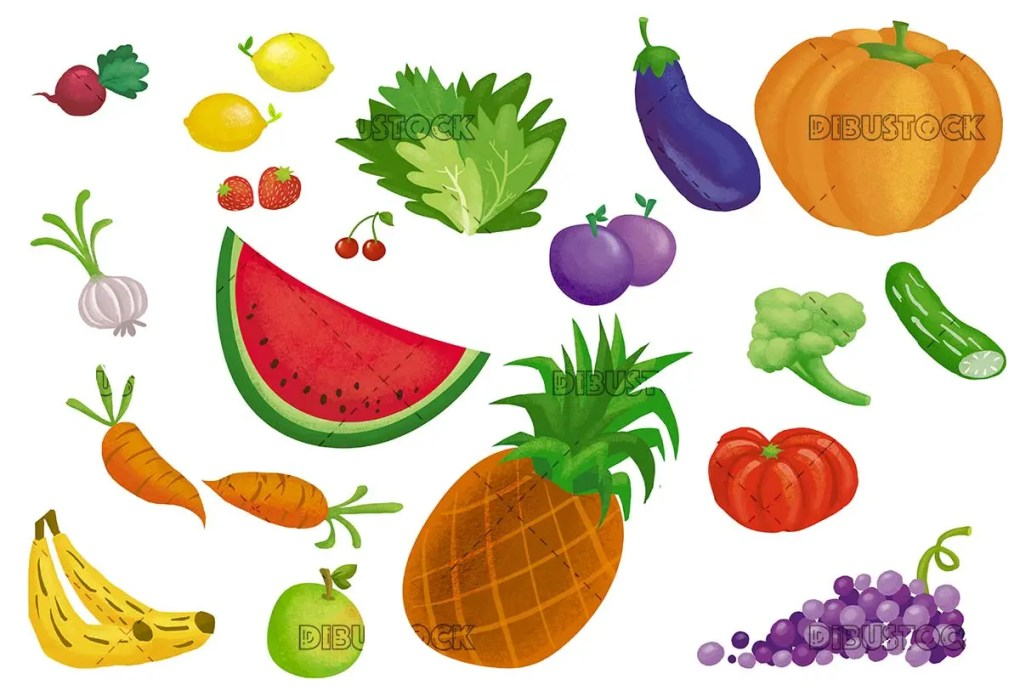 drawing of fruits on white background