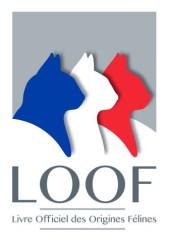 logoLOOF2014
