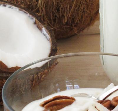 Iogurtes de Coco