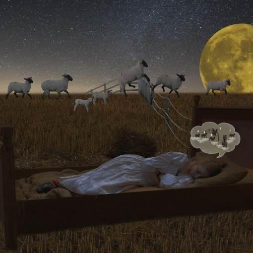 Noite de sono adormecer insonia