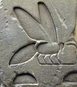 Abeja, jeroglífico egipcio en piedra