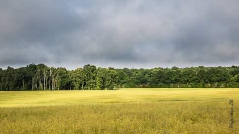 Paysages de Loire et du Bourbonnais-6