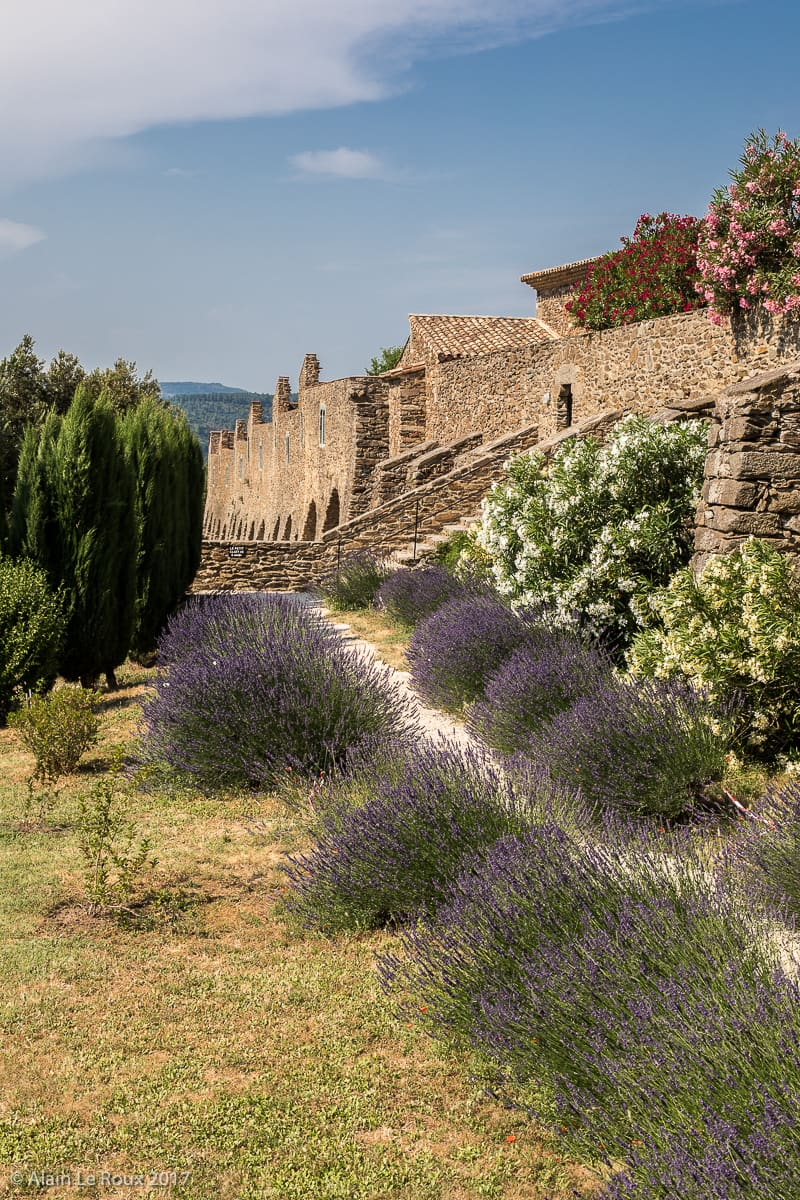 fleurs le long de l'enceinte ouest du monastère