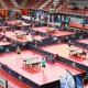 Championnat de France tennis de table samedi