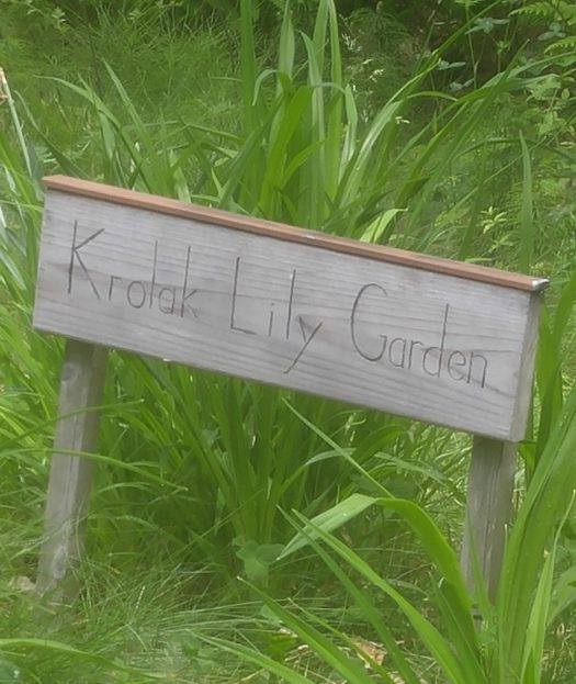 handmade wooden sign that reads Krolak Lily Garden