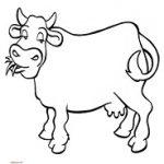vaca-min.jpg