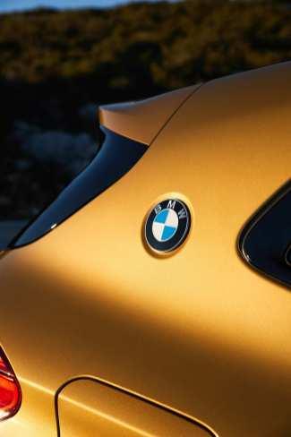 Als sportliches Ausrufezeichen trägt der X2 außerdem ein zusätzliches BMW-Emblem auf der C-Säule. Foto: BMW/Fabian Kirchbauer