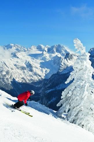Traumabfahrt durch den Märchenwald. Foto: Skiregion Dachstein West