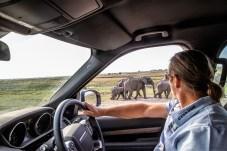 """Das """"Kavango-Zambezi Transfrontier Conservation Area"""", so die vollständige Bezeichnung, erstreckt sich über Gebiete der Staaten Angola, Botswana, Namibia, Sambia und Simbabwe. Foto: Auto-Medienportal.Net/Land Rover/Craig Pusey"""