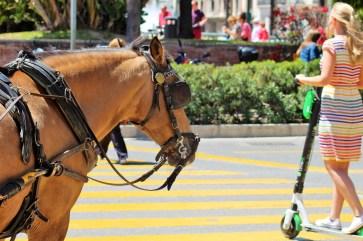 Auf den Straßen von Malaga ist man nie alleine unterwegs. Eine Helmpflicht wäre sinnvoll. © Solveig Grewe / mid