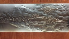 über 250 Millionen Jahre alt sind diese Fossilien, die einzigartig in Europa, im Museum Meride gezeigt werden. © Kurt Sohnemann
