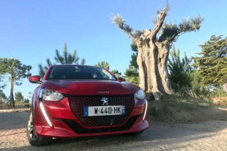 Uralt und topmodern: Der Peugeot e-208 macht auch vor einem Jahrhunderte alten Olivenbaum eine gute Figur. © Rudolf Bögel / mid