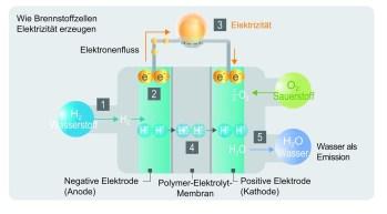 So erzeugen Brennstoffzellen Strom. Foto: Auto-Medienportal.Net/Toyota