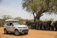 Vorfahrt für Land Rover – Elefanten müssen warten. © Land Rover