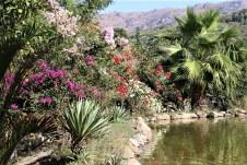 Der botanische Garten von Kreta bietet zu jeder Jahreszeit eine Fülle von blühenden Pflanzen. © Kurt Sohnemann