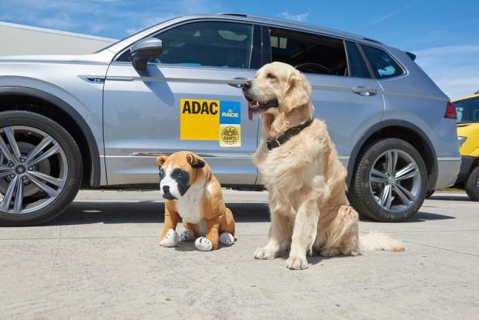 ADAC-Test Hundetransport: Hund und Hunde-Dummy im Einsatz für die Verkehrssicherheit. Foto: Auto-Medienportal.Net/ADAC