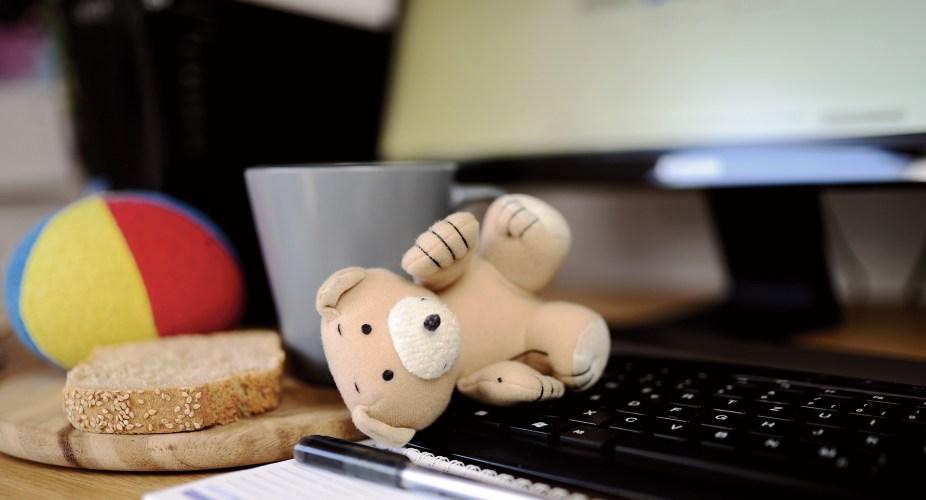 Teddy auf Laptop