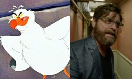 Arielle - Scuttle Zach Galifianakis