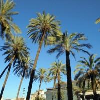 Sizilien - Ein Reisebericht (1. Teil)